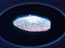 Triage Forensics digital investigation